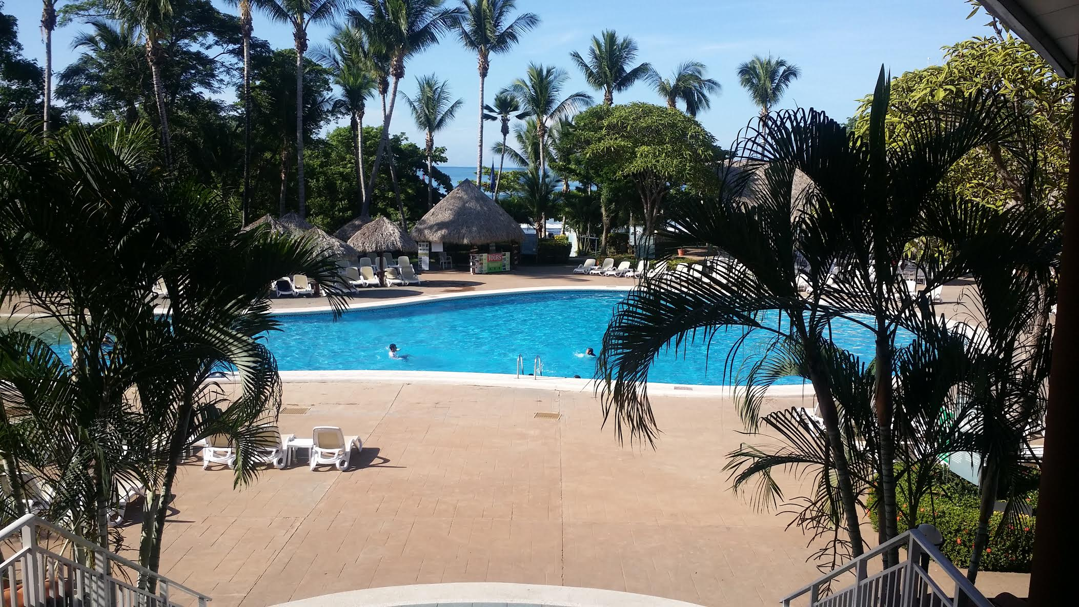 Howler Monkeys Would Frequent the Trees in the Back of the Barcelo Hotel in Tamarindo.