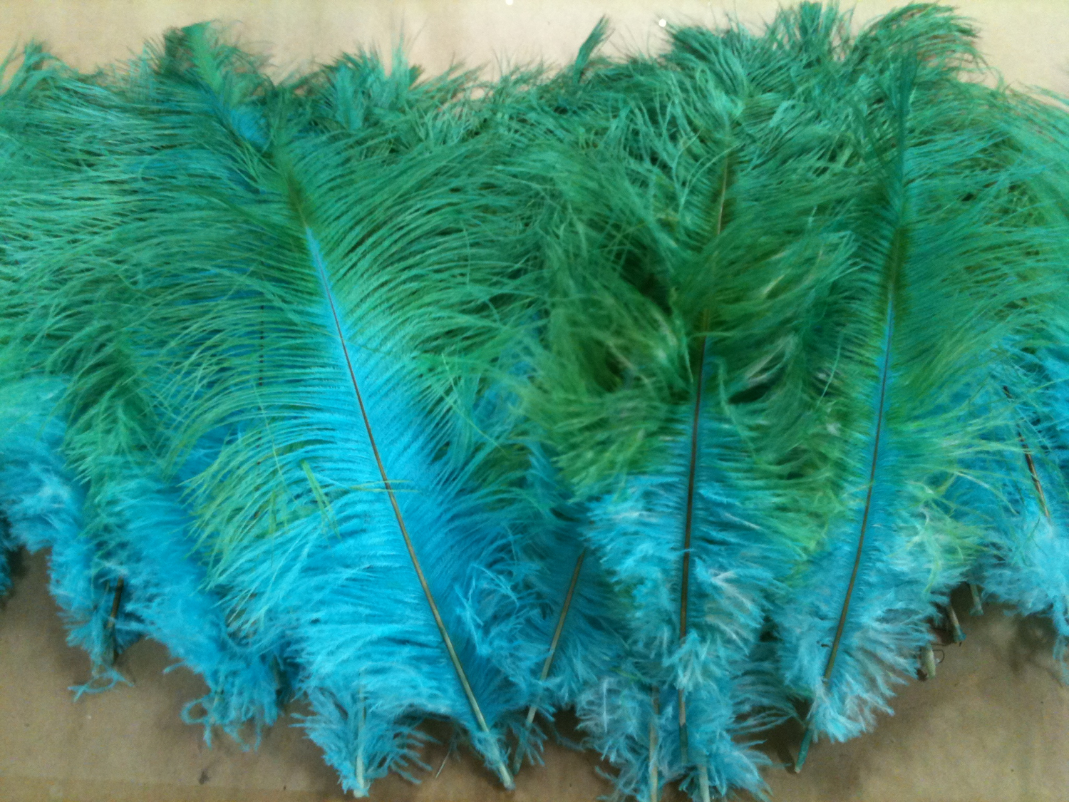 HAND DYED FEATHERS