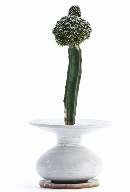 A Tale of Plant & Pot: Adam Silverman x Kohei Oda