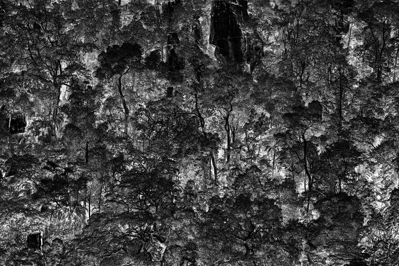 1500-5834-cairns-b.jpg