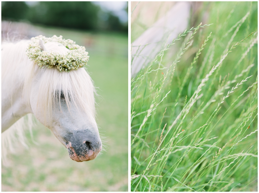 LE HAI LINH Photography-Hochzeitsfotograf-Hochzeitsreportage in Gut Hohenholz_0097.jpg