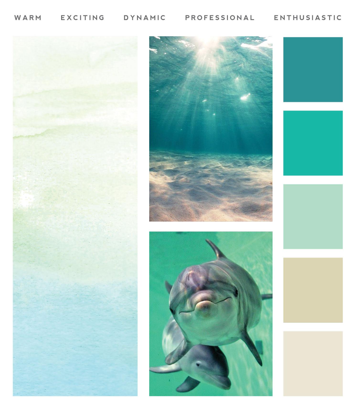 ocean palette for rita connor website
