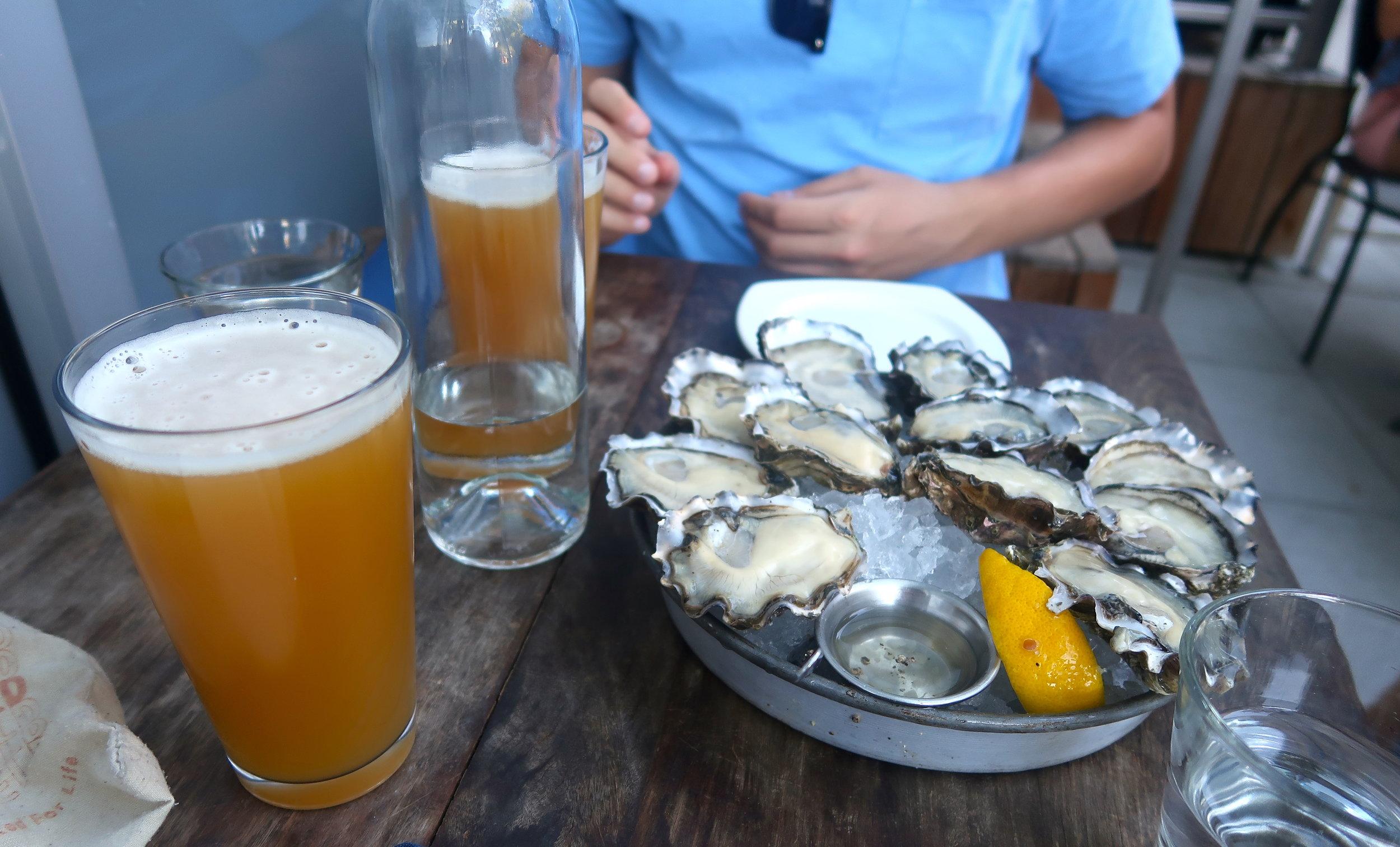 taylor shellfish farms.JPG