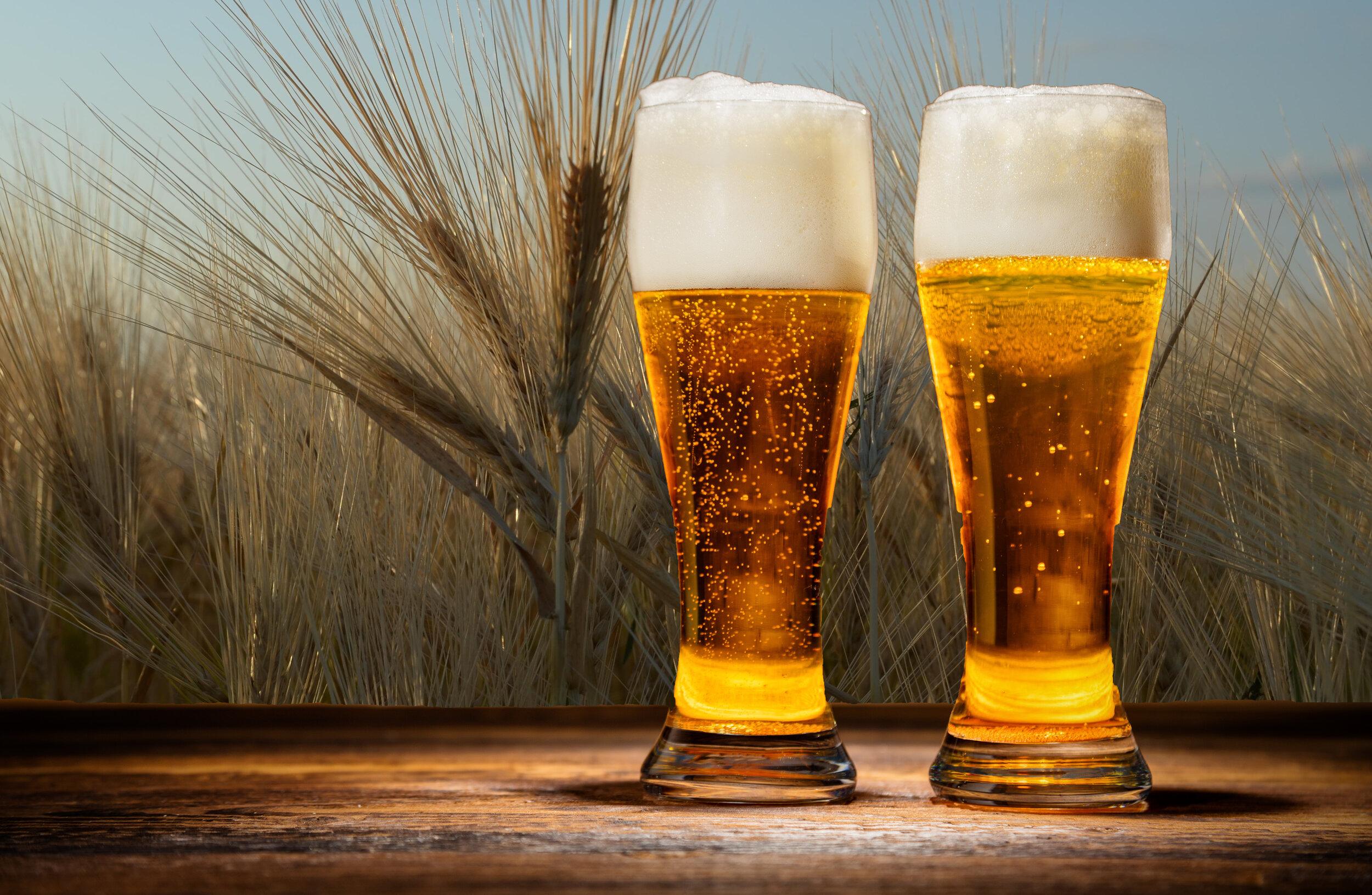 Barley Beer Photo 2.jpg