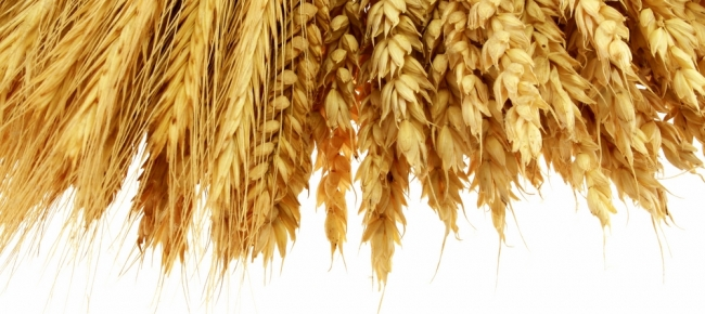 Fibre is a must - both soluble and insoluble