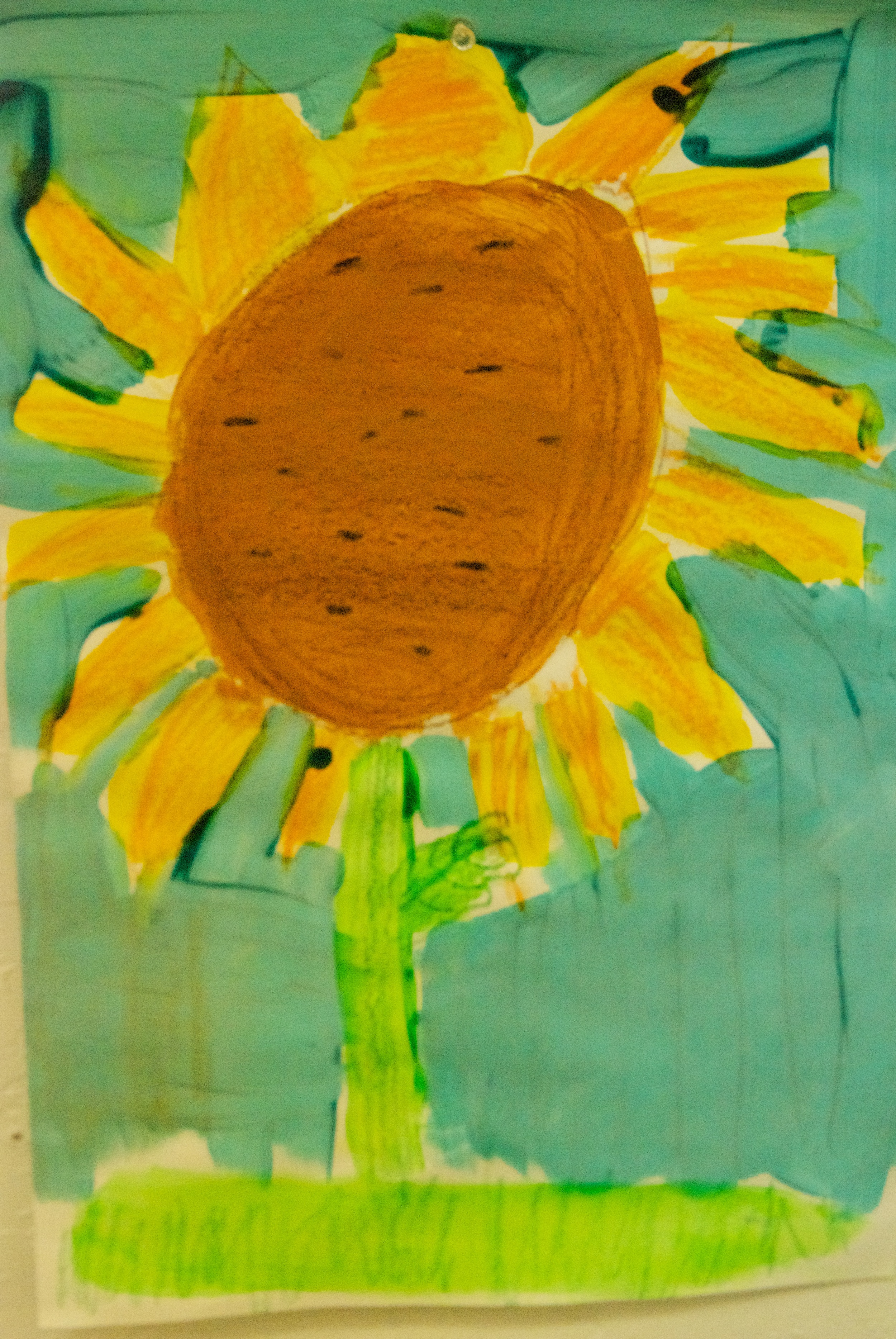 Sunflower Summer Camp 3 2014.jpg