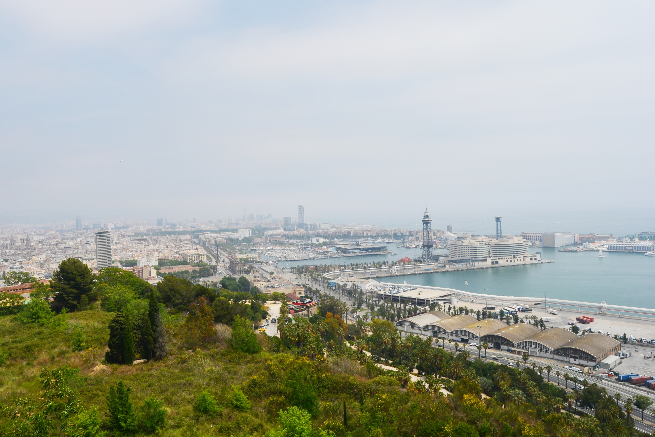 The view from Montjuic, a park atop a hill southwest of the city