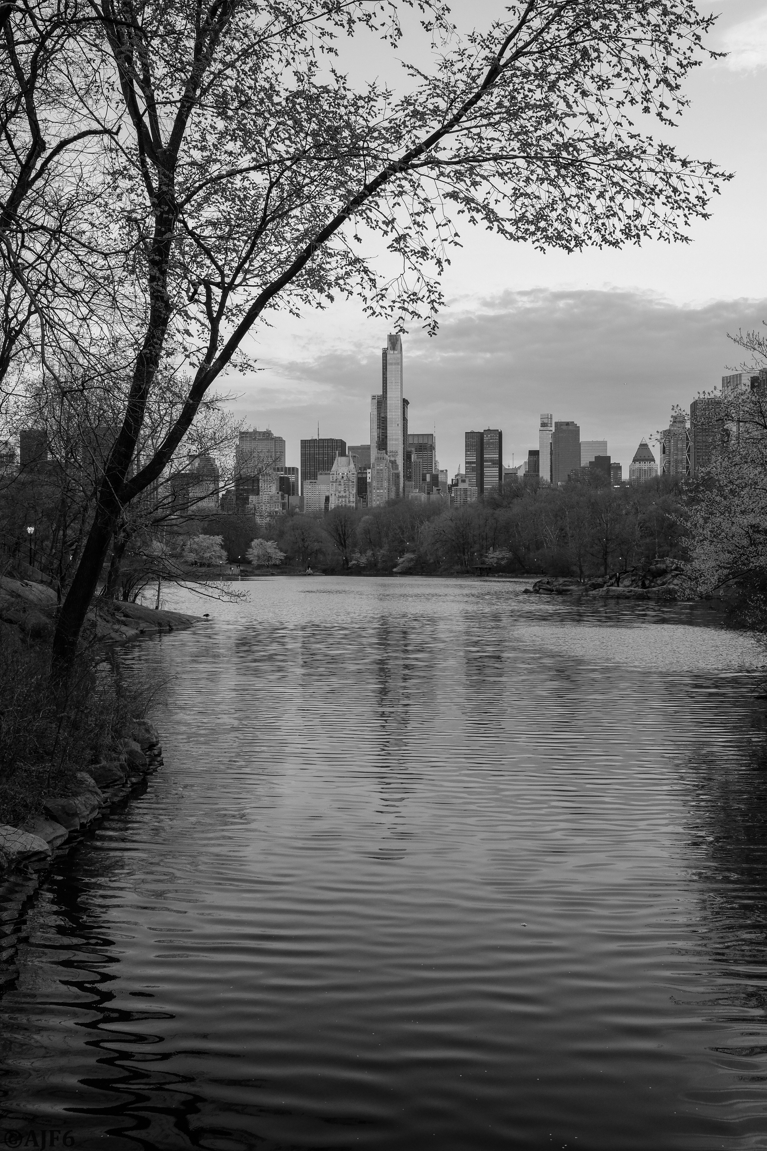 View from Bank Rock Bridge, Central Park.