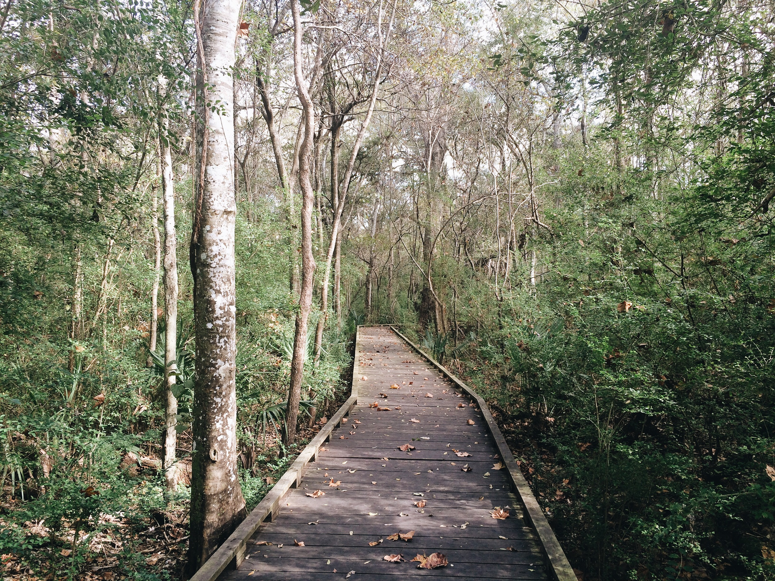 Acadiana Park Nature Station in Lafayette, Louisiana