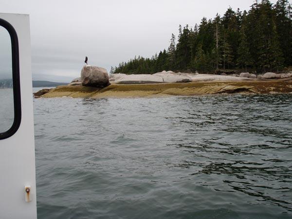fishing---14.jpg