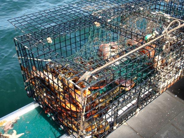 fishing---25.jpg
