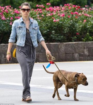 Jessica Biel walking her dog with a FOUND leash.