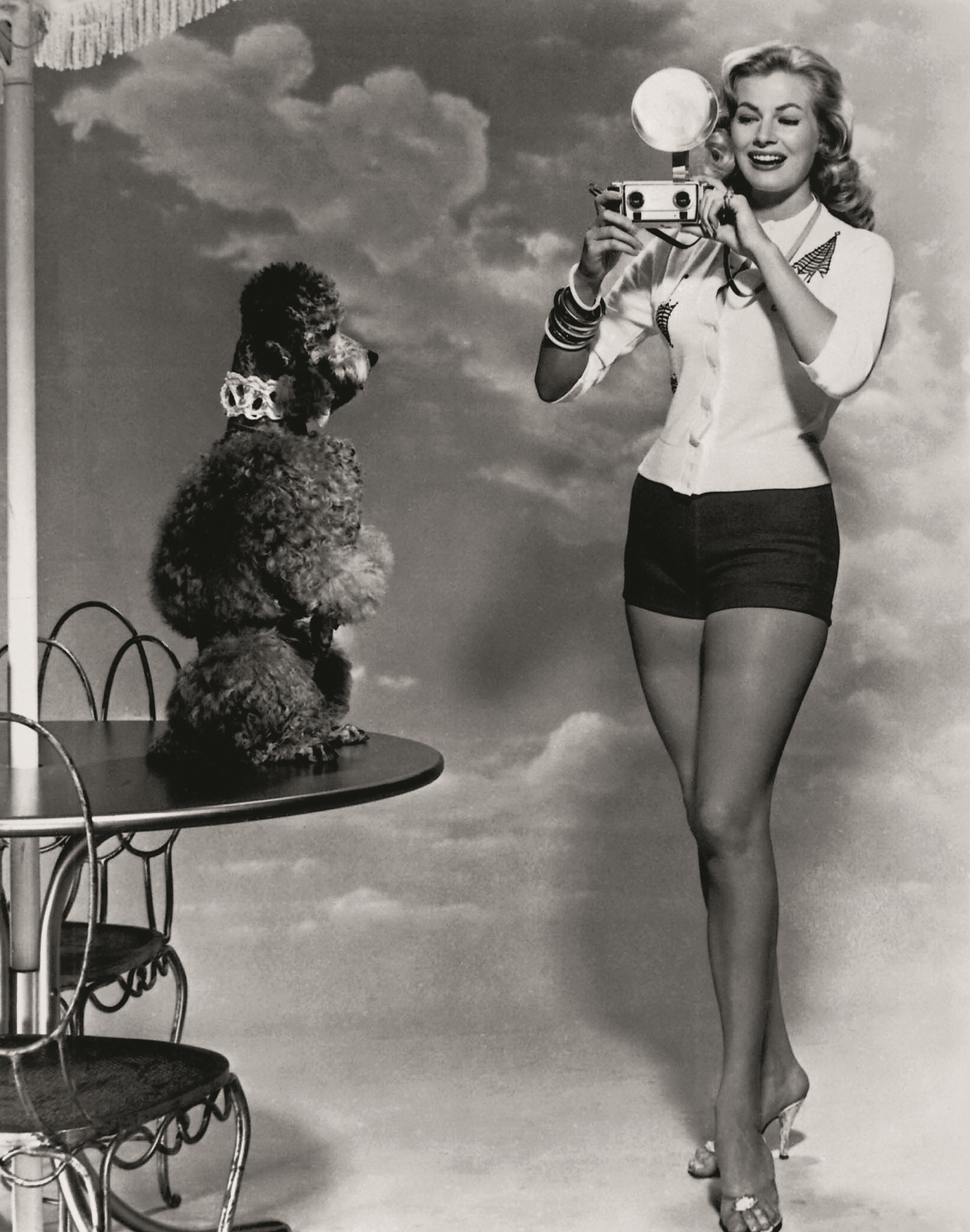 The Former Miss Sweden (1950), Anita Ekberg, is seen here in a typical 'cheesecake' pose with a Poodle, to be used for promotional publicity shots. Her screen career was largely unremarkable until she was used by Fellini in his 1960 film  La DolceVita,  getting soaked in the Trevi Fountain in Rome.