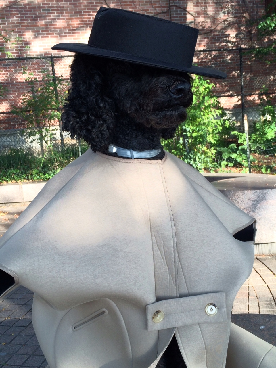Ralph Lauren hat, Zero Maria Cornejo jacket