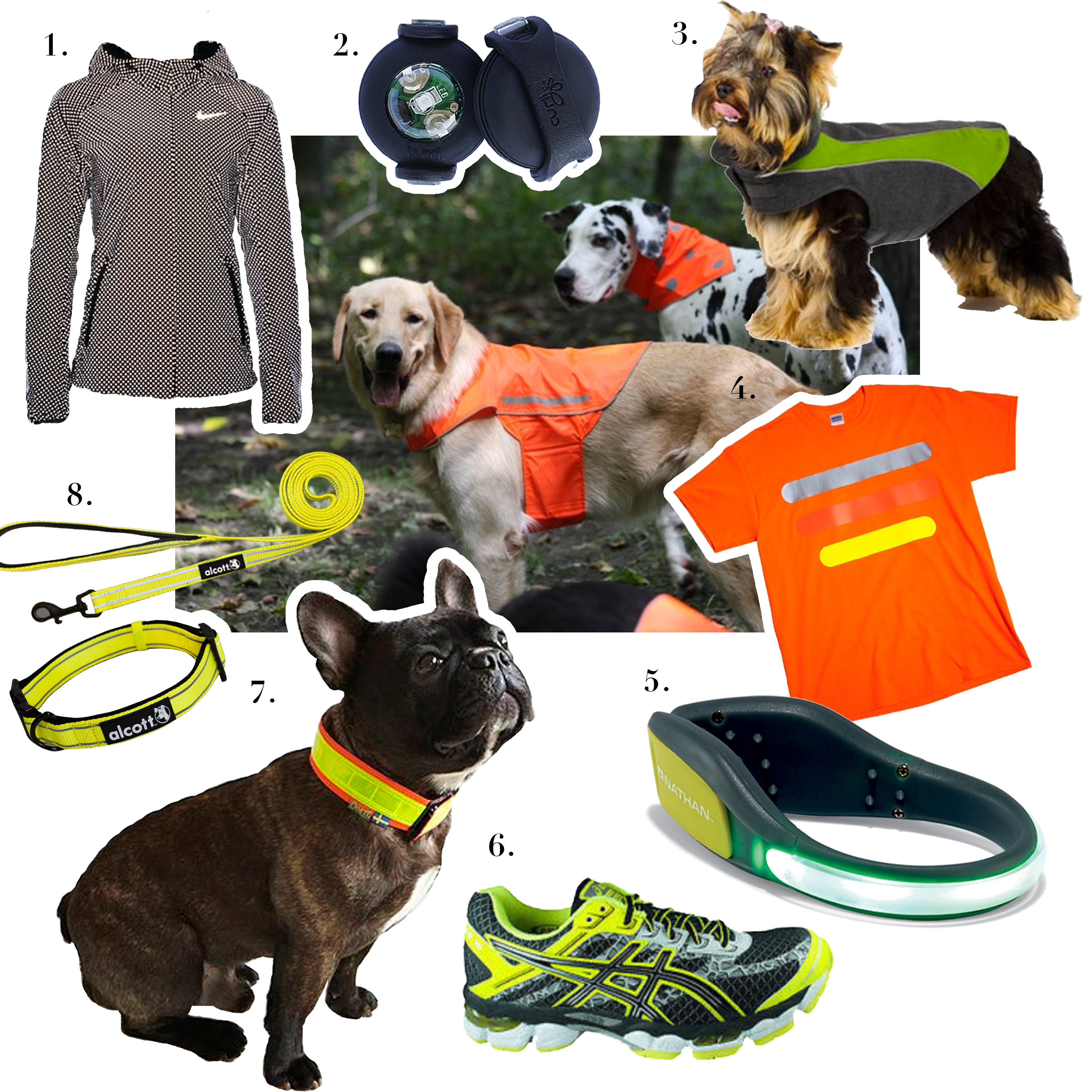 1. Nike,    Shield Flash Max Jacket     2. Curli,    Luumi LED     3. Kakadu Pet,    Explorer Double Fleece     4. Protecto Products,    Reflective T-Shirt     5. Nathan Sports,    LightSpur     6. Asics,    Gel-Cumulus 15/16 Lightshow Sneakers     7. Boett,    Reflective Harness     8. Alcott,    Visibility Adventure Leash and Collar    Middle Photo by   Mudd and Wyeth