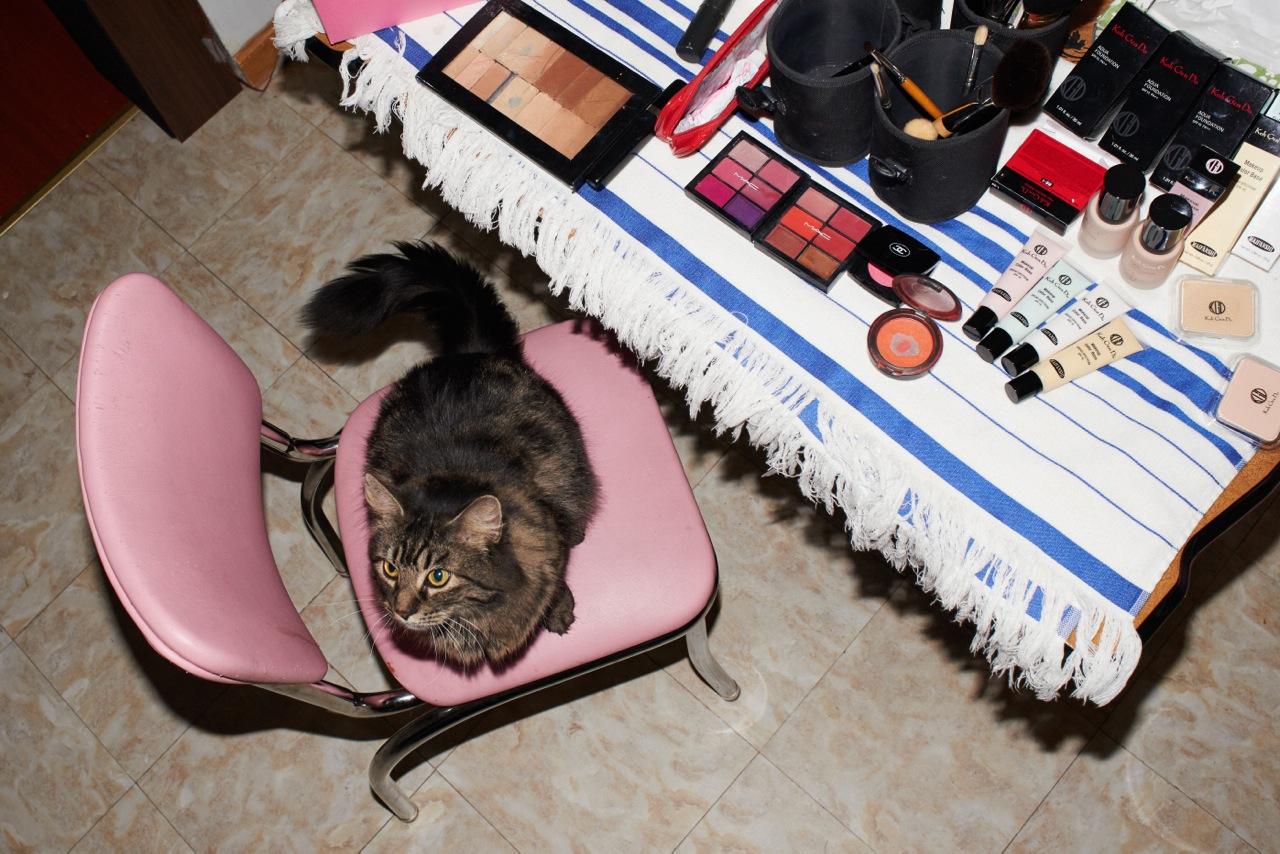Makeup:   MAC  ,   Chanel  ,   Koh Gen Do  ,   Kat Burki