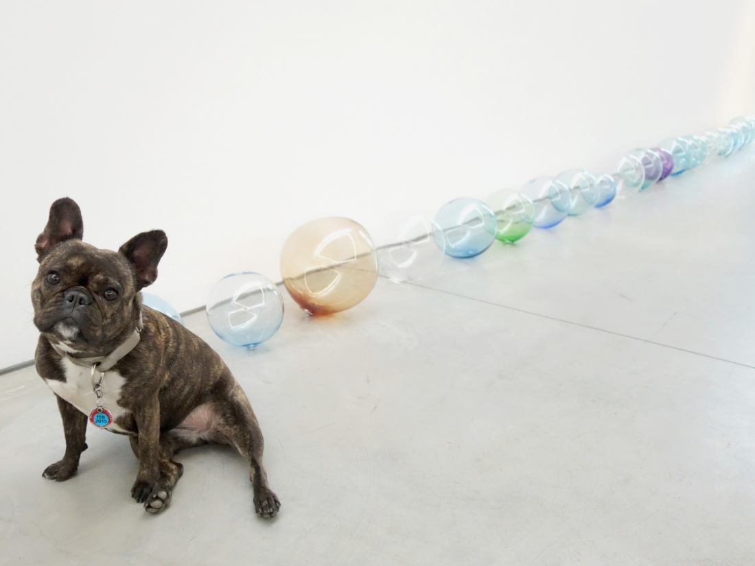"""These are my farts...I fart a lot.  Jeppe Hein """"Breath,"""" 2015 in All We Need Is Inside at 303 Gallery."""