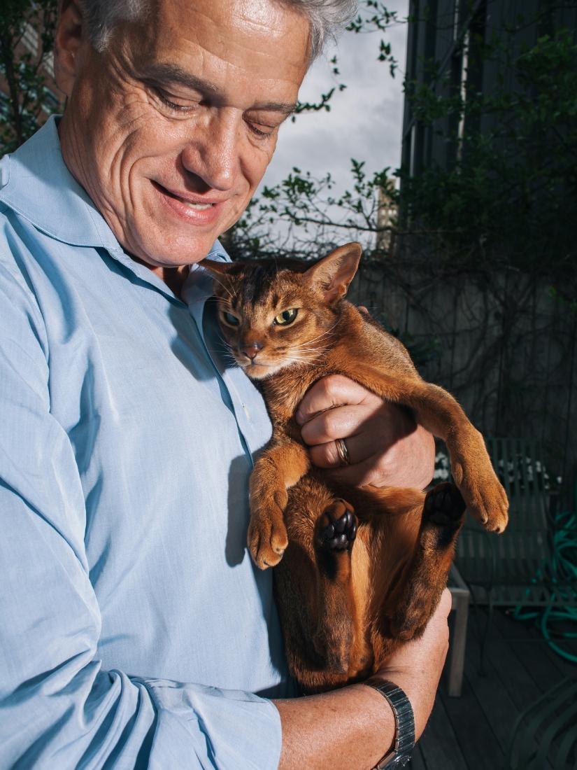 mrs sizzle cat david williams.jpeg