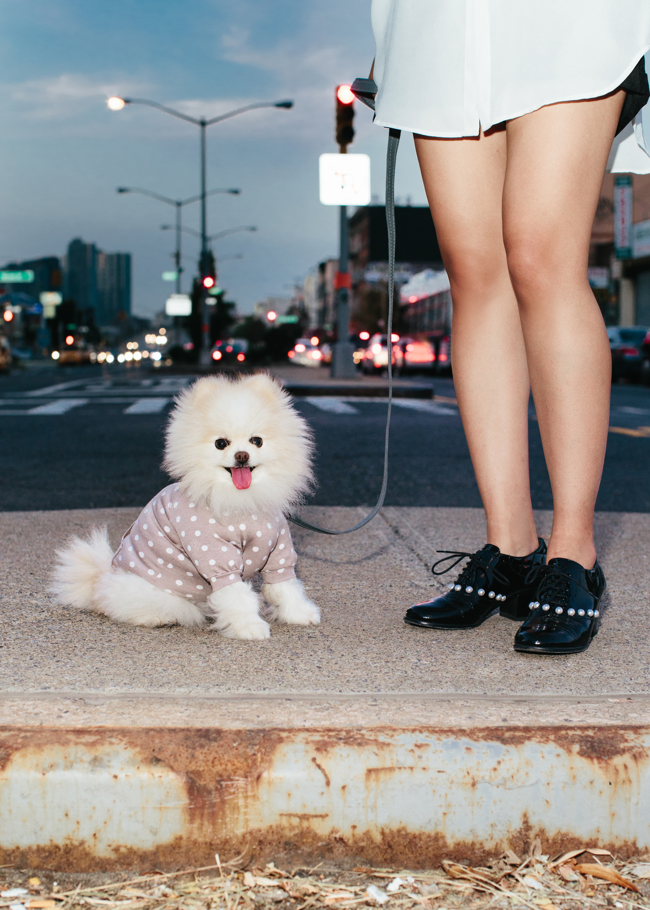 @picathepom  in a  Max - Bone hoodie  and  leash . Her personal assistant in CHANEL.