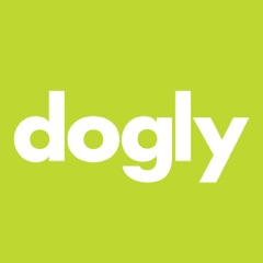 dogly green.jpeg