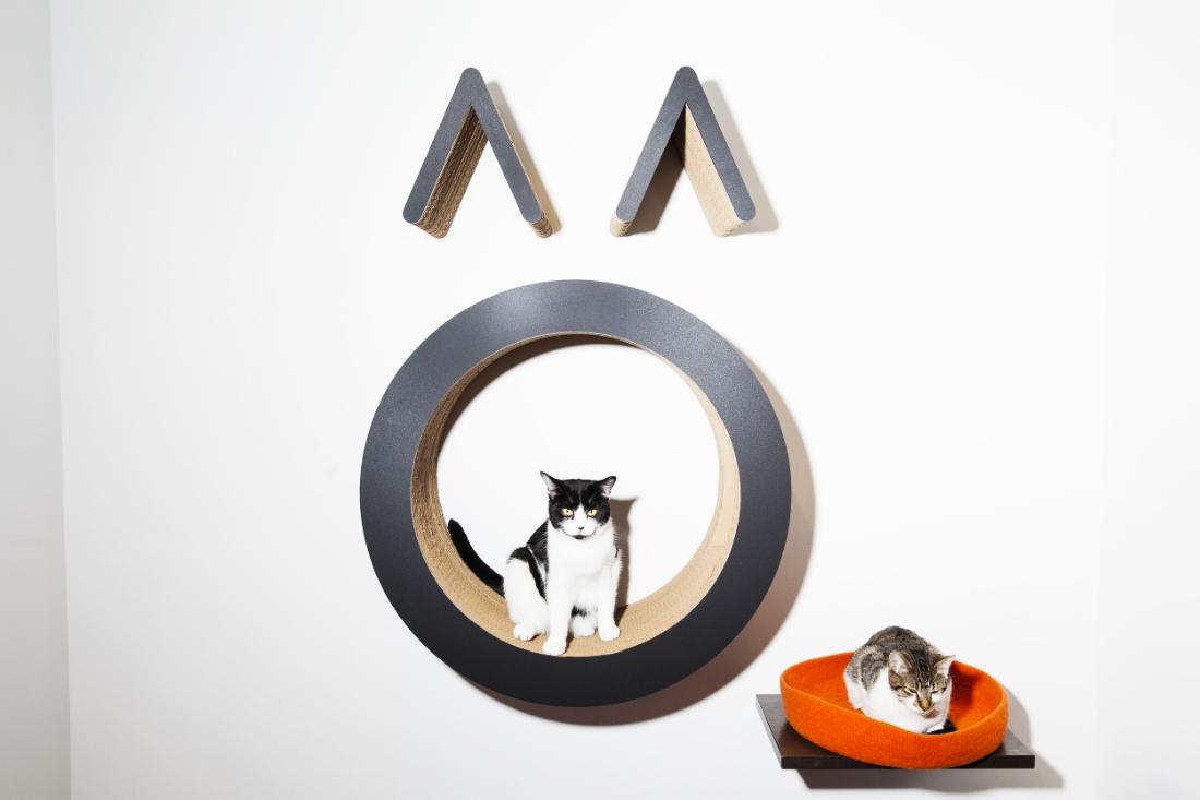 Cats chillin' at Koneko