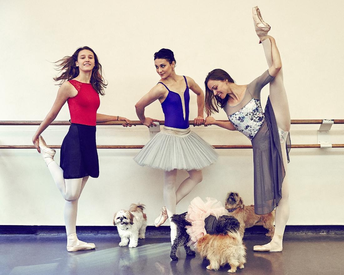 Devon Tuescher, Sarah Lane, Sarah Smith and their dogs