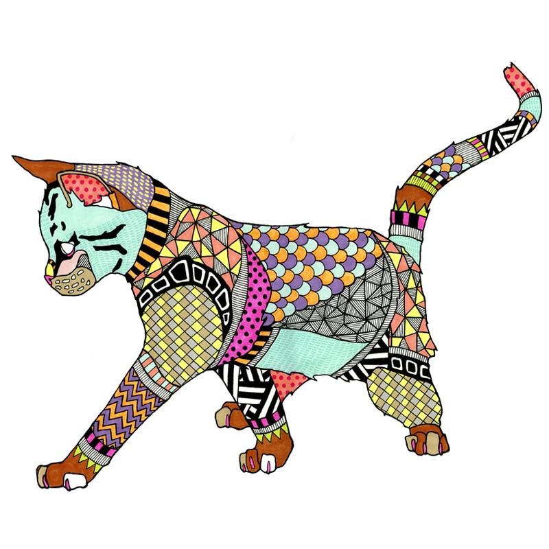 kaitline oconner cats mrs sizzle.jpg
