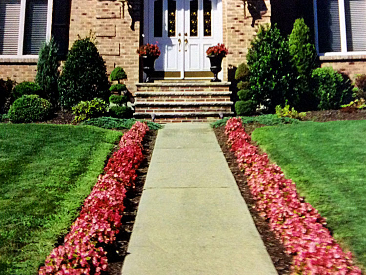 Entryway borders with topiary & containers