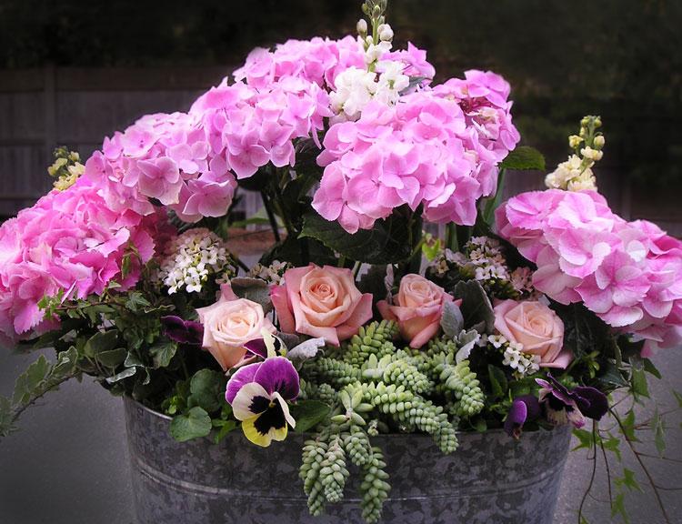 Spring Container Gardening