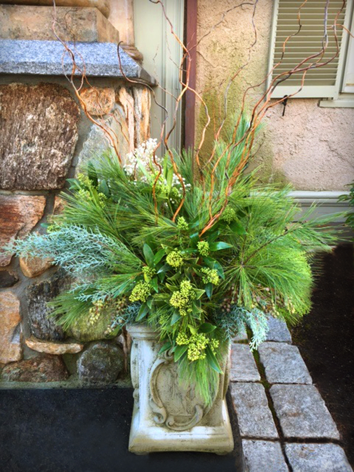 Winter greens in container