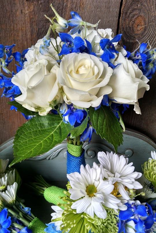 white roses and blue delphinium made this bride's bouquet stunning.