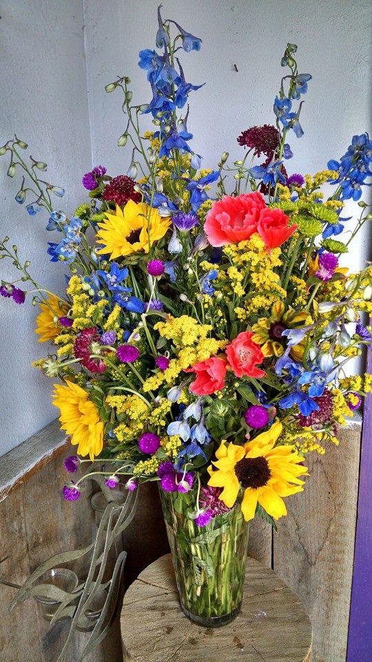 wild-flower-s.jpg