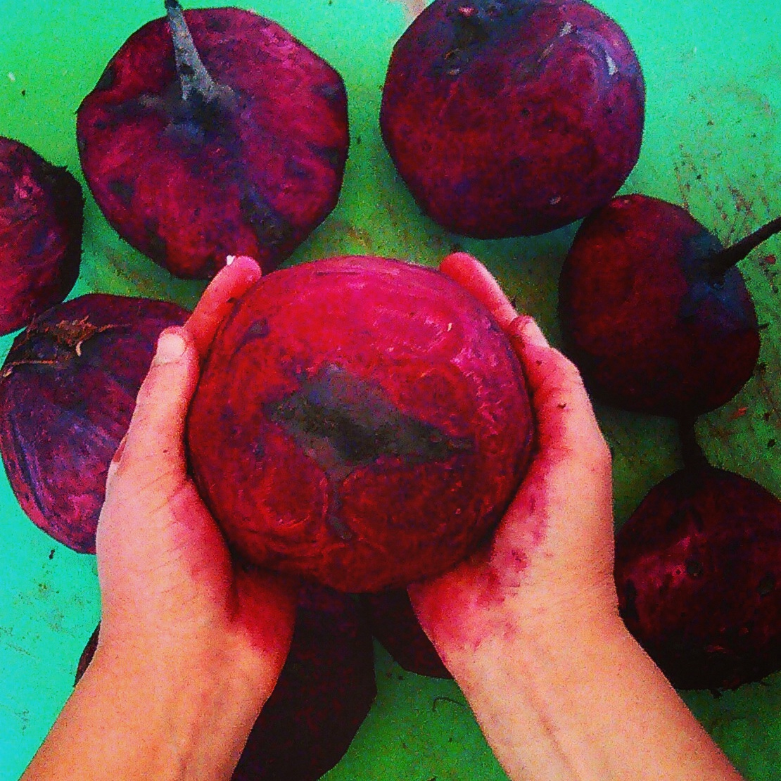 Beets for Beeting Heart Kraut