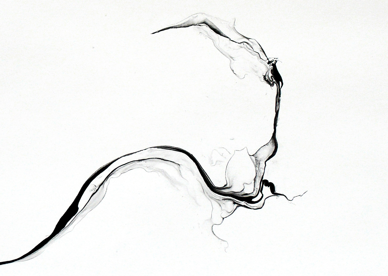 Turbulences/ phuyu  (close-up), 2014, ink on paper, 62,5 x 92cm
