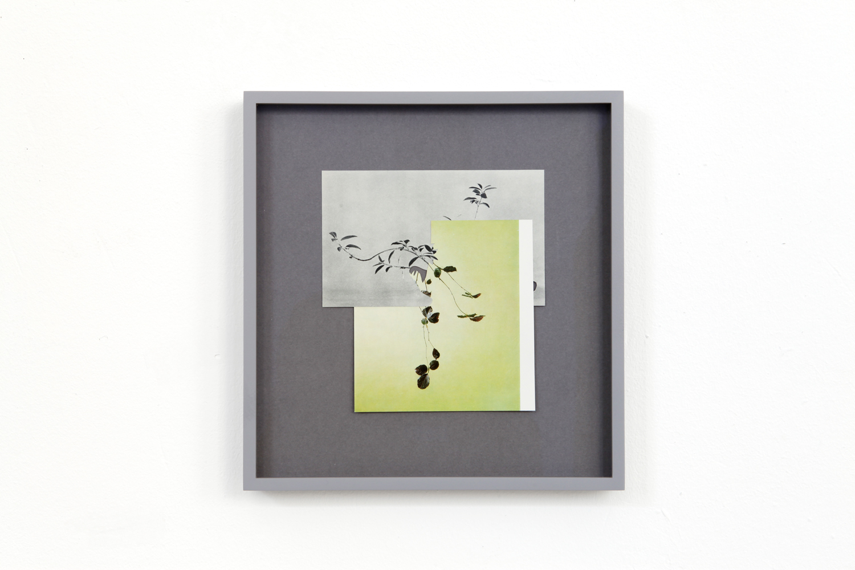 shape/ alize, 2014  , paper, glue ,