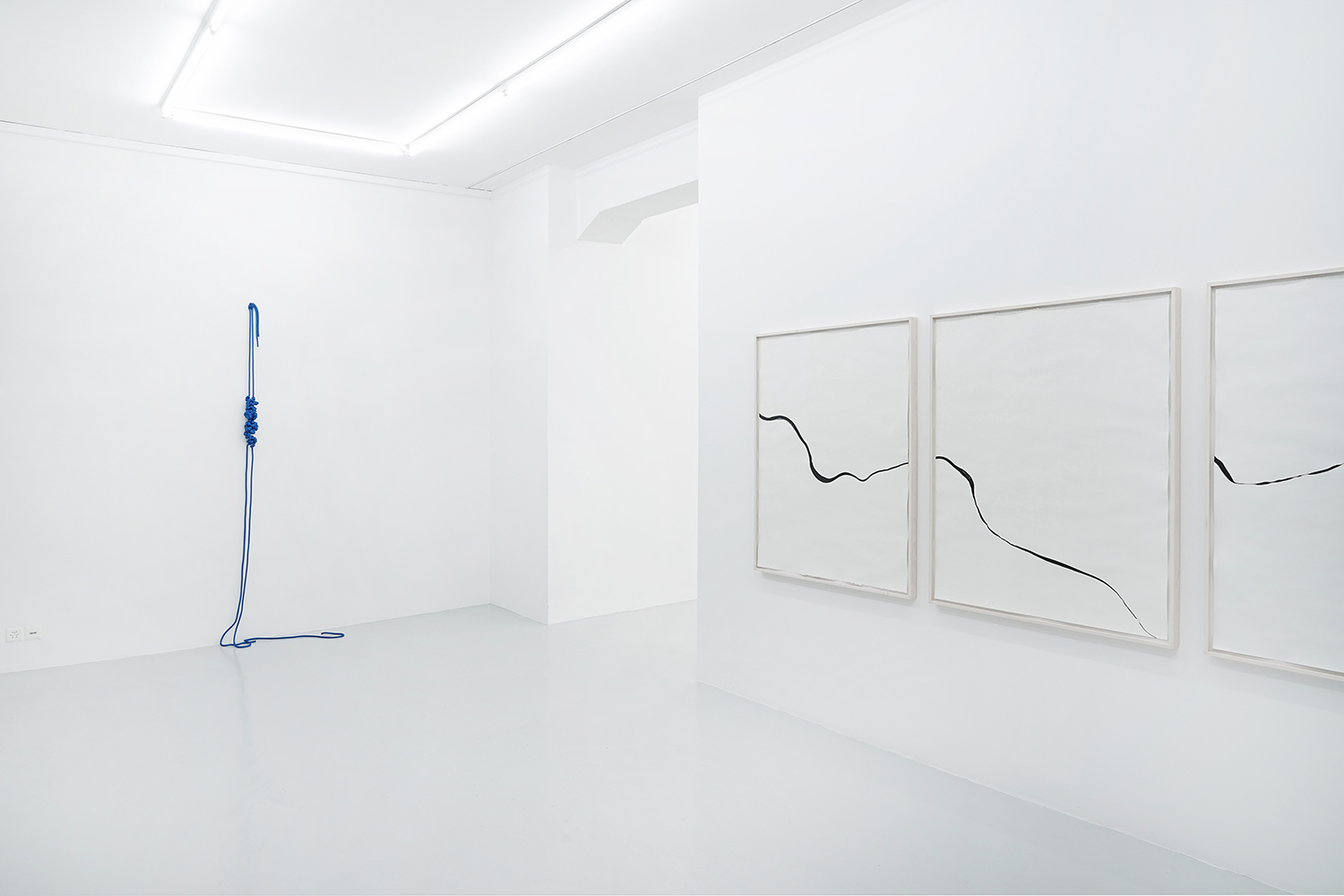 Trap/Cepo, 2018, rope, 246 x 76 x 33cm; Refractions/Laloran, 2018, ink on paper, 3 frames, each 125 x 99cm