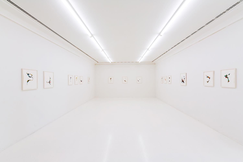 Scattered Rainbow , 2019, ink on paper, 40 x 30cm and 48 x 36cm  Installation in  Träume werden wahr  at Helmhaus, Zürich