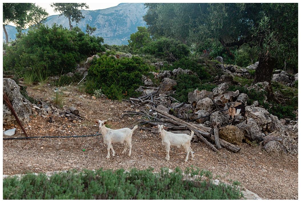 Greece Blog Part 1_0023.jpg