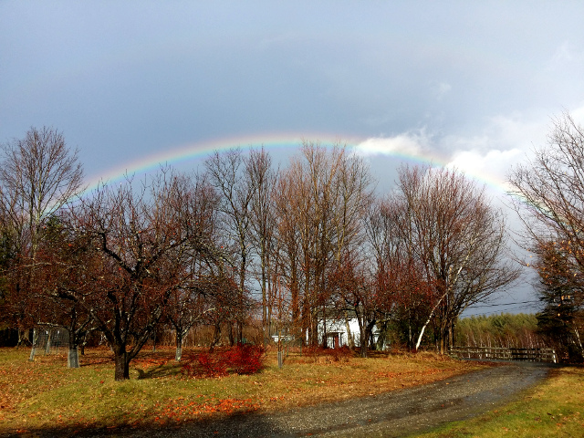 A beautiful rainbow on January 10, 2016. It was in a different spot than it is normally during the summer.