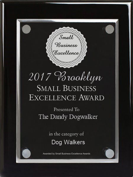 2017 Brooklyn Small Business Award.jpg