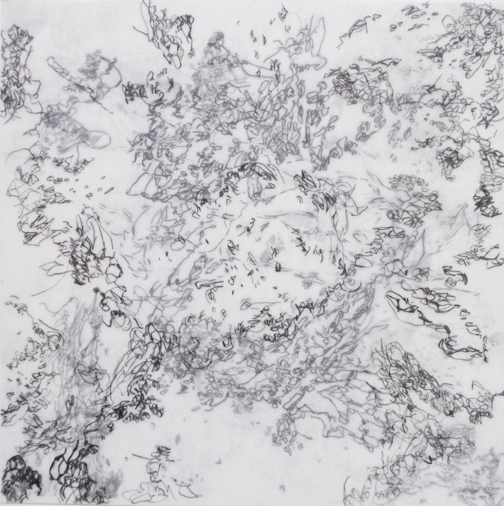Study 30 (graphite)