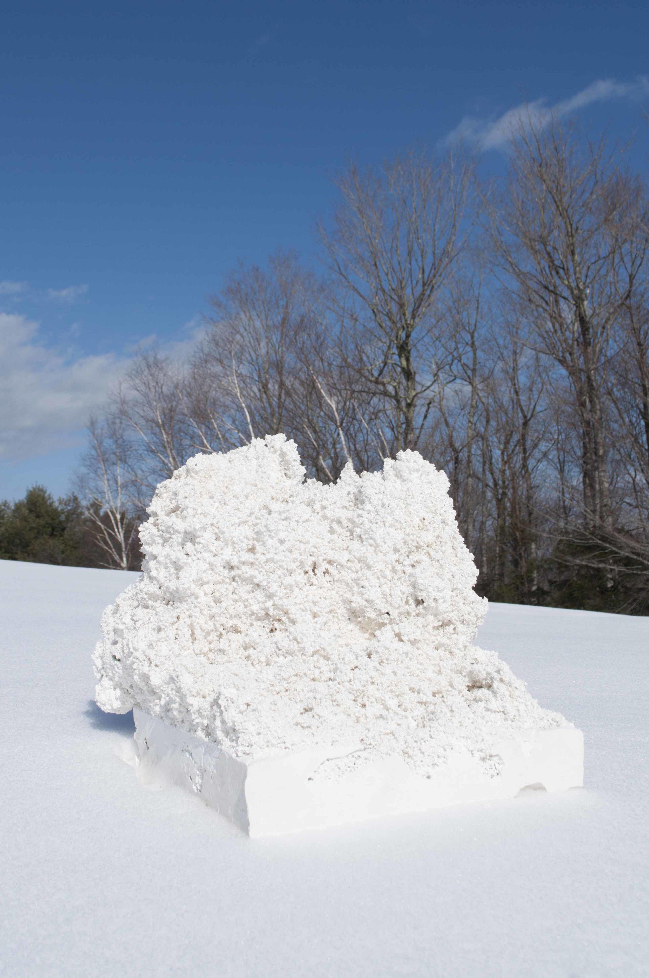 Snow Study 03