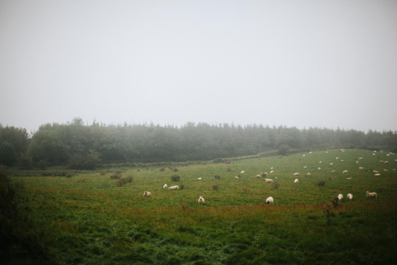 amber_byrne_mahoney_lifestyle_travel_photography_scotland_uk_001.jpg