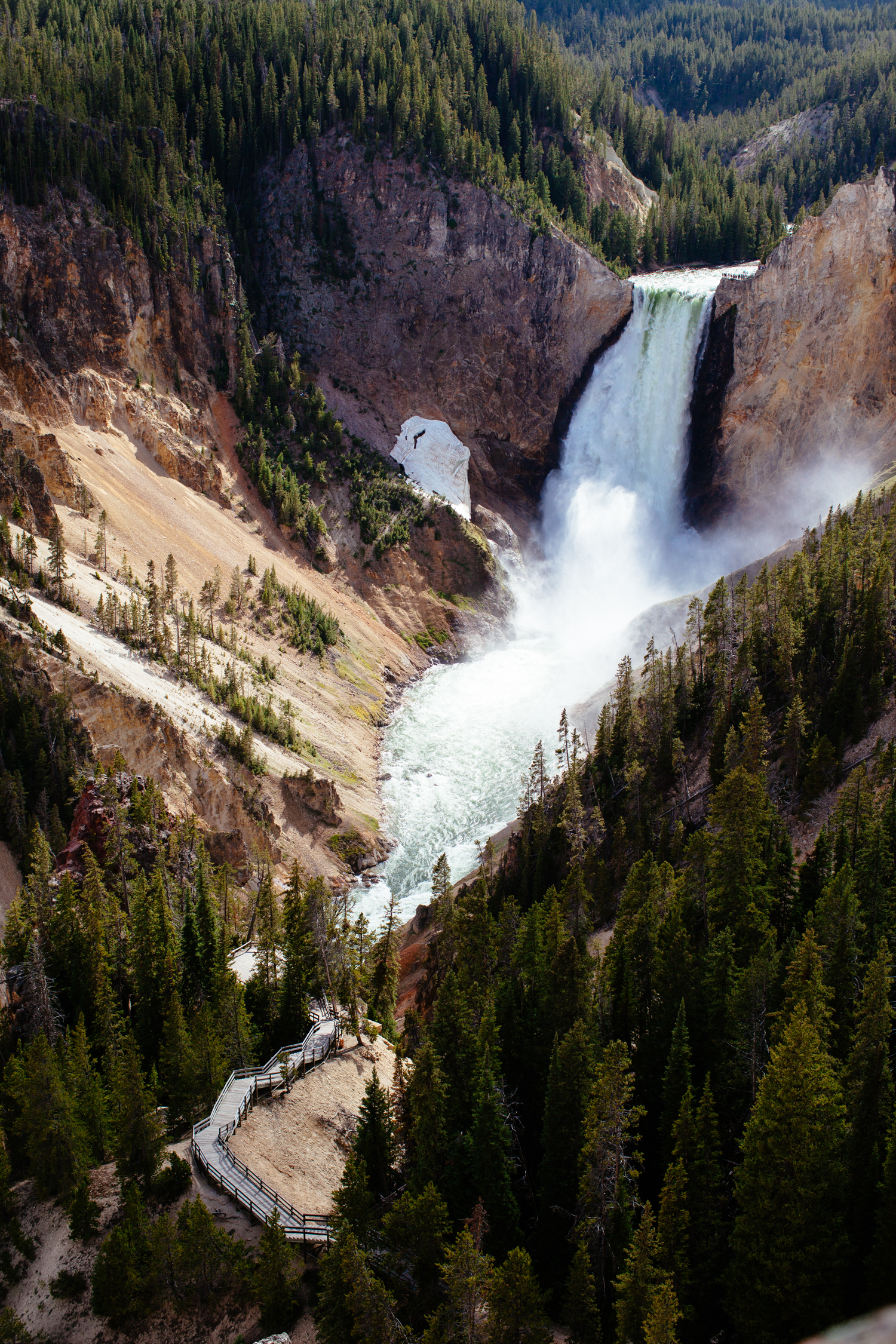 amber_byrne_mahoney_collective_quarterly_magazine_print_travel_lifestyle_montant_yellowstone_national_park_007.jpg