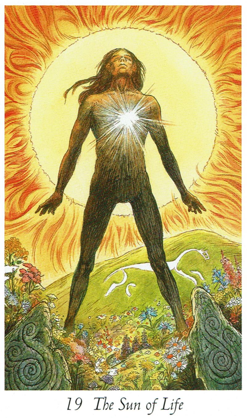 The Sun of Life - Wildwood Tarot
