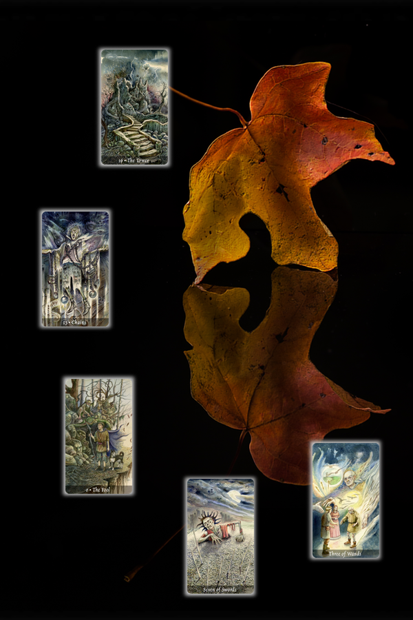 Leaf and shadow with cards
