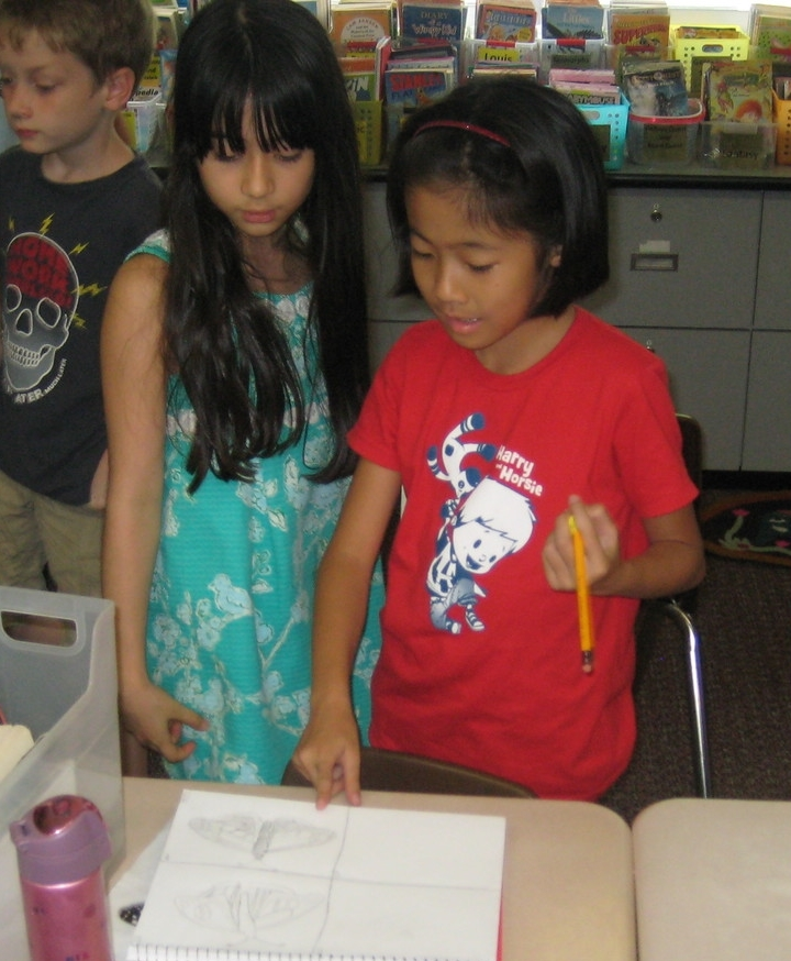 Children observing their peer's sketches and adjustments.