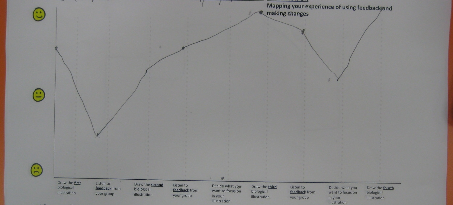 Students rate their experience with feedback