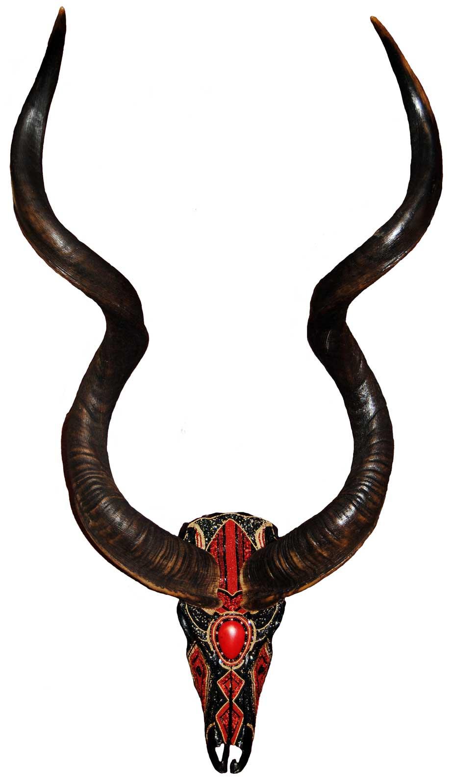 kudu-3.jpg