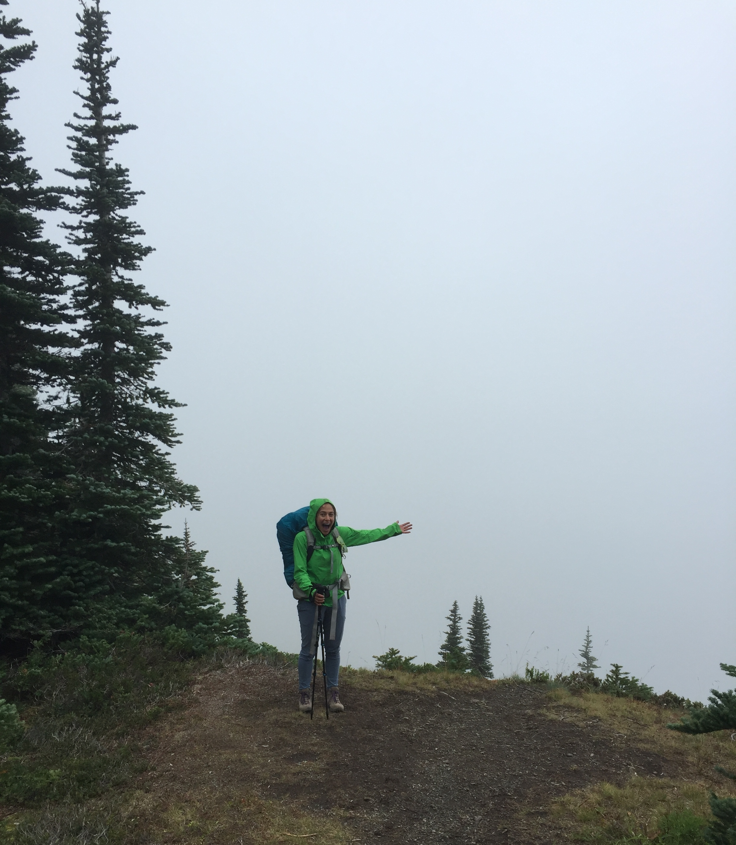 Check out that view! [Olympic National Park]